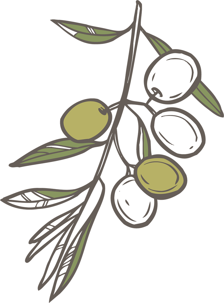Cuisine-Lifestyle - Olivenöl Shop - Icon Olivenzweig