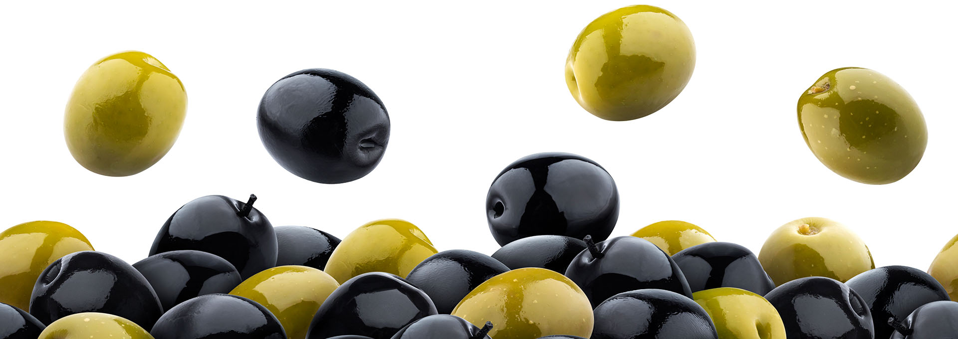 Cuisine-Lifestyle - Olivenöl Shop - Hintergrundbild - Olivenlandschaft